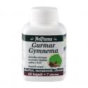Gurmar - Gymnema  67 tablet