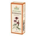 Echinacea bylinné kapky (40% líh)